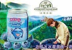 纯天然野生蓝莓果汁