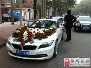 安阳梦之队婚庆车队 婚庆租车 婚车车队