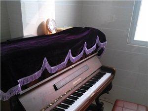 澳门星际网址县七色光艺术中心钢琴班开始招生啦!