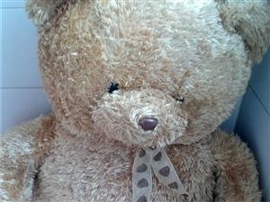 1.2米大熊毛绒玩具