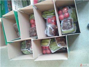 金南阳绿色蔬菜
