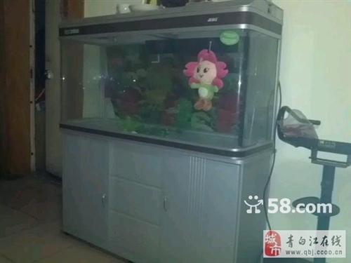 清江苑八层新鱼缸出售