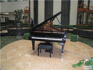 駐馬店龍韻琴行專業二手鋼琴藝術