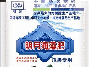 开远尚德经贸有限公司诚招红河州明月海藻肥代理经销商