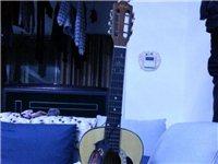 红棉品牌九成新吉他(已经出售)