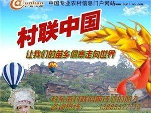 村联中国网诚招黔东南县级运营加盟商