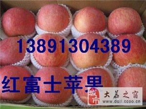 陜西冷庫紅富士蘋果產地最新價格\冷庫膜袋紅富士蘋果