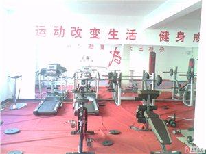 樂安龍騰武術培訓招收學員