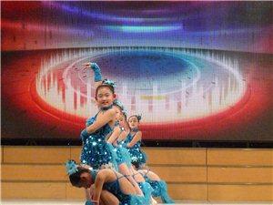 中国舞拉丁舞芭蕾舞