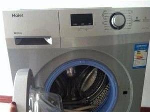 9.8成新 海尔滚筒洗衣机