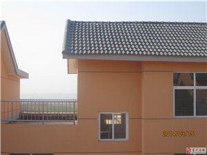 整体出租东上官新社区连体独户三层房屋(270平方)