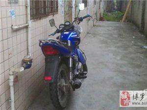 转蓝色街跑,力大省油,拉风神器,价格低,求秒 - 2000元
