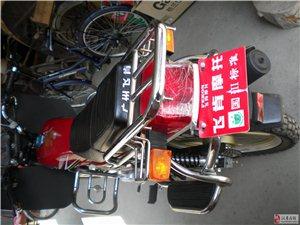 出售全新男式125飞肯摩托车