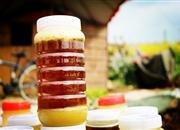 售蜂蜜,現拿蜂蜜,有圖有真相。