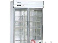 爱雪大展示制冷柜