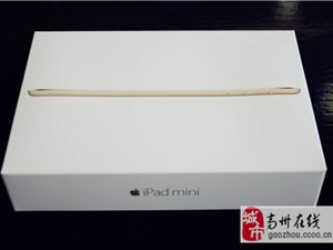 苹果ipadmini3