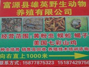 澳门网上投注官网县雄英野生动物养殖有限澳门网上投注网站