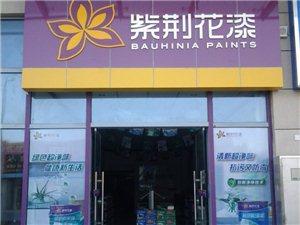 紫荆花漆胶州店