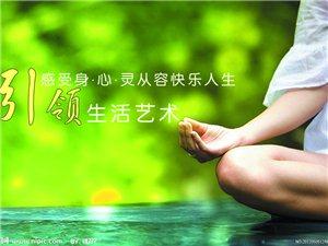 靓舞-圣珈瑜伽学院