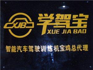 888真人娱乐智能汽车驾驶训练馆