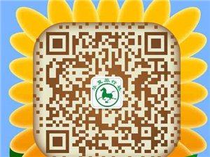 太阳集团娱乐网址华夏旅行社