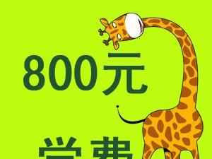 香港艾乐巴中学之国际幼儿园-明星宝宝网络评选大赛
