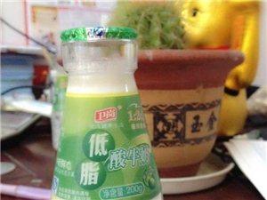本店推荐:低脂酸奶
