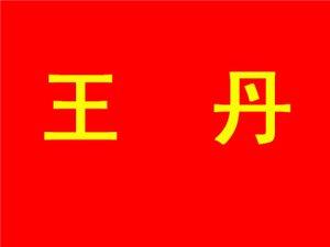 061王丹