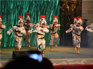 002舞蹈《骏马奔腾迎新春》