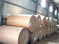 滑县新华造纸厂