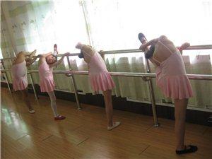 龙口起点舞蹈培训中心形象图
