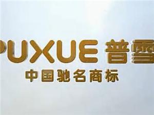 普雪厨房电器官方宣传片
