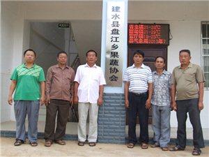 建水盘江乡果蔬协会