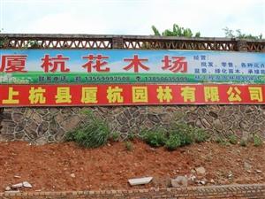 厦杭花木场