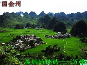 最美自然�l村――�f峰林