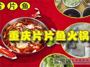 重庆片片鱼自助火锅