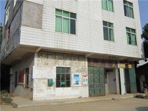 高州长坡镇雷垌村形象图