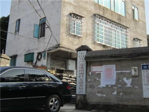 高州长坡镇坡田垌村形象图