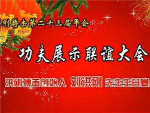 2013洪刚搏击年会